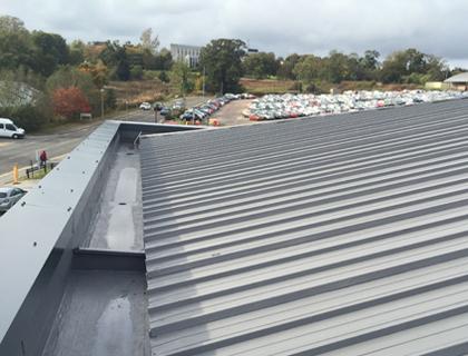 Flat Roof - SIGnature PU Liquid