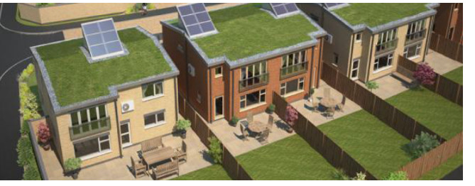 Sig Design Amp Technology Extensive Green Roof From Sig