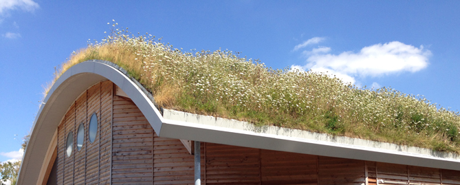 Sig Design Amp Technology Green Roofs From Sig Design