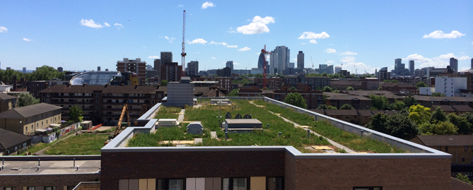 Sig Design Amp Technology Benefits Of Green Roofing From Sig