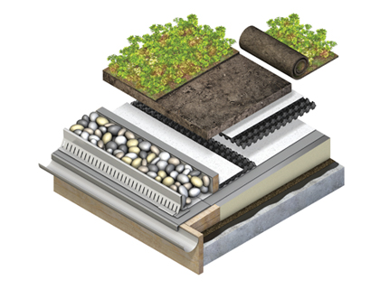 Green Roofing Render
