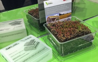 Green-Roof-Kit-2015-feature