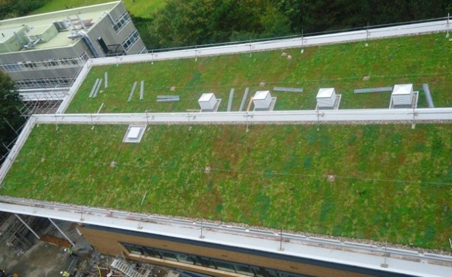 How much will a Green Roof weigh?