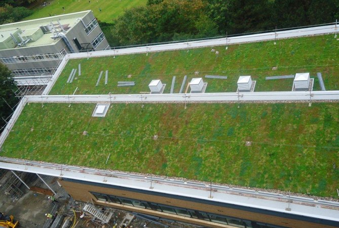 Sig Design Technology How Much Will A Green Roof Weigh