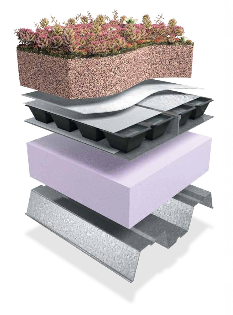 Extensive Green Roof Render