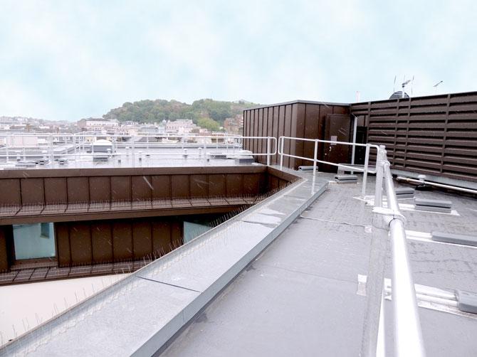 Multi-Material roof, Premier Inn Jersey St Helier (Single ply, Zinc, Green Roofing)
