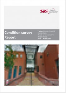 Flat Roof Survey Report