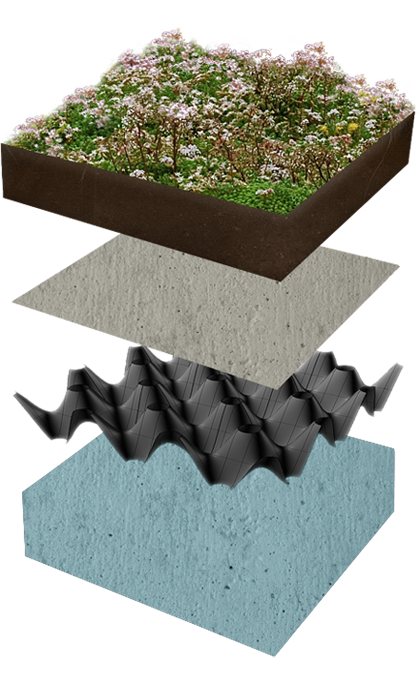 Built-up green roof