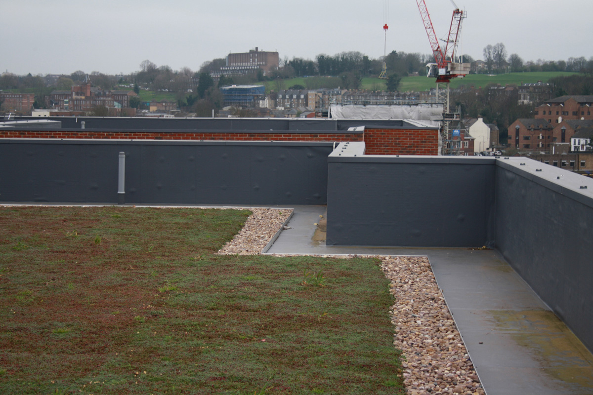 Corporation Street, Rochester, Kent -  Residential Single Ply Roofing with Green Roof