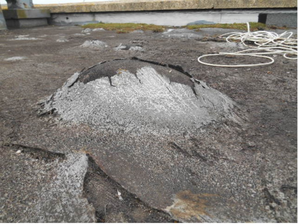Blistered Flat Roof